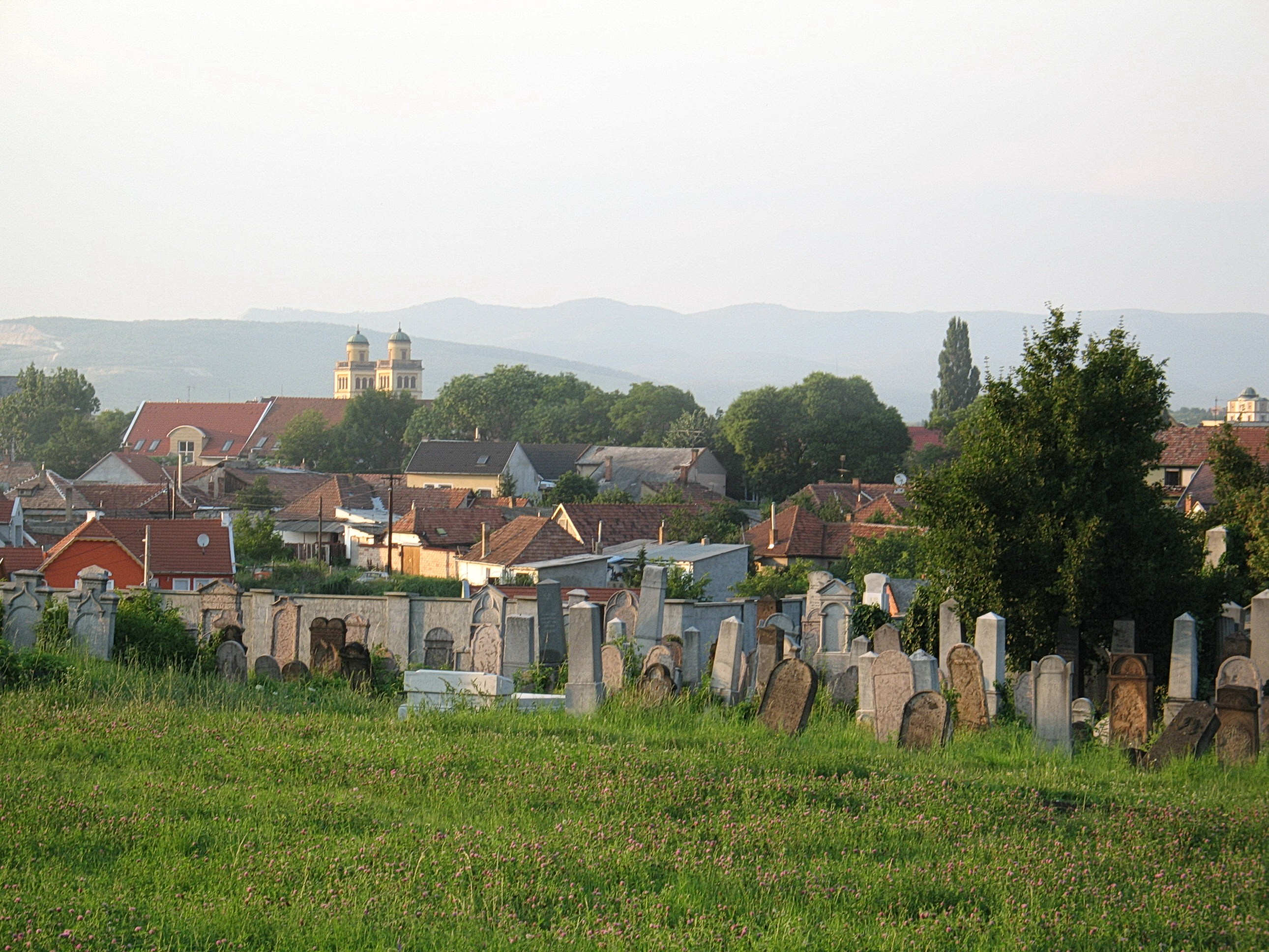 http://varhegyi-family.net/Gabor/Hungary/Tombstones_Eger/Eger_Jewish_cemetery_3.jpg
